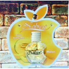Autogeur Meloen Auto Parfum | Auto Luchtverfrisser | Auto Verfrisser |Zoete Autogeur 10ml- Geurhanger Fruitig